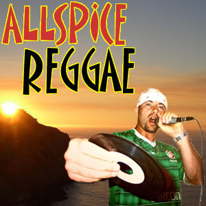 BigUpRadio.com ALLSPICE REGGAE Dancehall Show
