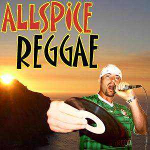 BigUpRadio.com ALLSPICE REGGAE Dancehall Show